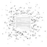 כתובה עם עיטורי יונים