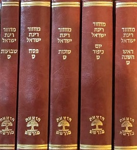 מחזור רינת ישראל -דמוי עור